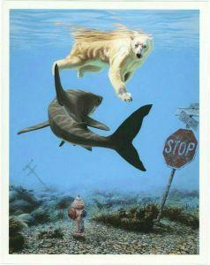 cub-vs-shark